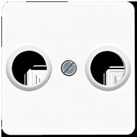 Centre plate for TV-FM socket