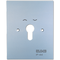 Metal cover for key switch