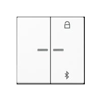 Tecla programadora universal con Bluetooth