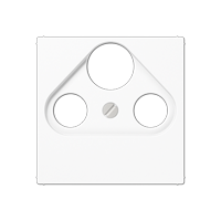 Centre plate for SAT-TV socket