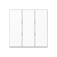 Wippe für 3fach-Schalter