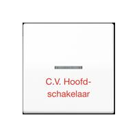"""Schakelwip  met lens en opschrift """"C.V. Hoofdschakelaar"""""""