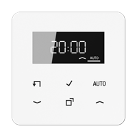 Standard timer with display