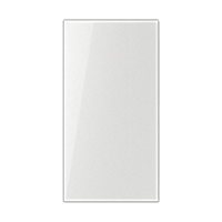 Transparent cover 33 x 65 mm