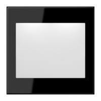 schwarz (lackiertes Aluminium)